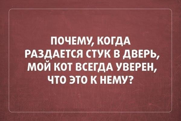 https://pp.vk.me/c7001/v7001275/15df1/sQfdxoHLU_0.jpg