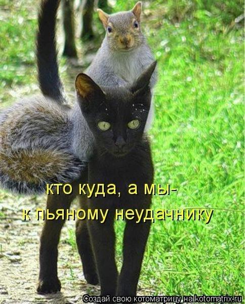 http://cs14115.vk.me/c7008/v7008313/73b0/pl2BZrsUCsg.jpg