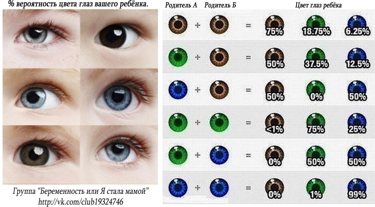 eye color genetics