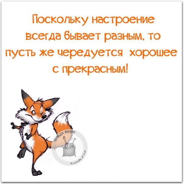 http://cs543105.vk.me/v543105334/1cc32/xkVyxV5TIRc.jpg