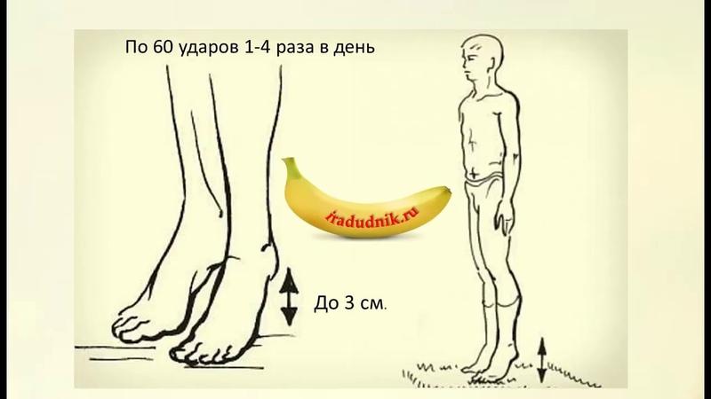 Упражнение А.Микулина при варикозе и застое крови, лимфы