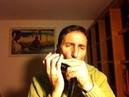 Yesterday - Armonica Cromatica ( Hohner CX12 )