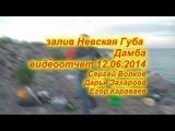 залив Невская Губа дамба 11.06.2014 фидер
