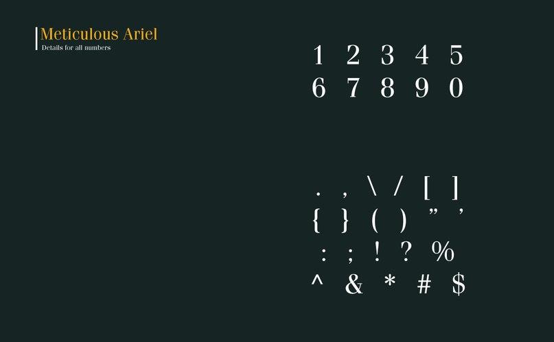 Download Meticulous Ariel Font font (typeface)