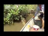 WATCH Brazilian Men Find Giant Snake In River Giant Yellow Anaconda Biggest Anaconda Ever Found