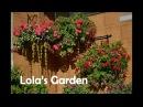 День открытых дверей в саду Лолы Каримовой