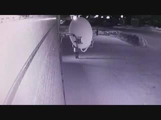 Запись с камеры наблюдения