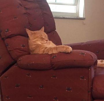"""Я в 7 лет: """"как дедушка может просто сесть в кресло и уснуть, ахахаха, он что, притворяется? Кто захочет спать днём?))"""""""