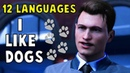 I Like Dogs in 12 Languages - Detroit Become Human