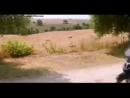 Видео от Vito🦂 19