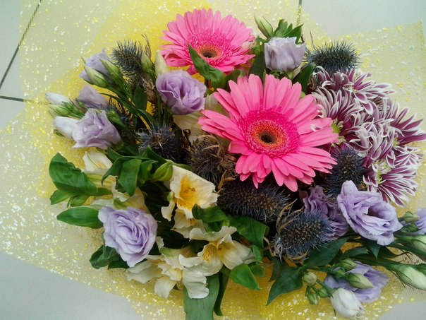 Цветы 24 магазин ромашка