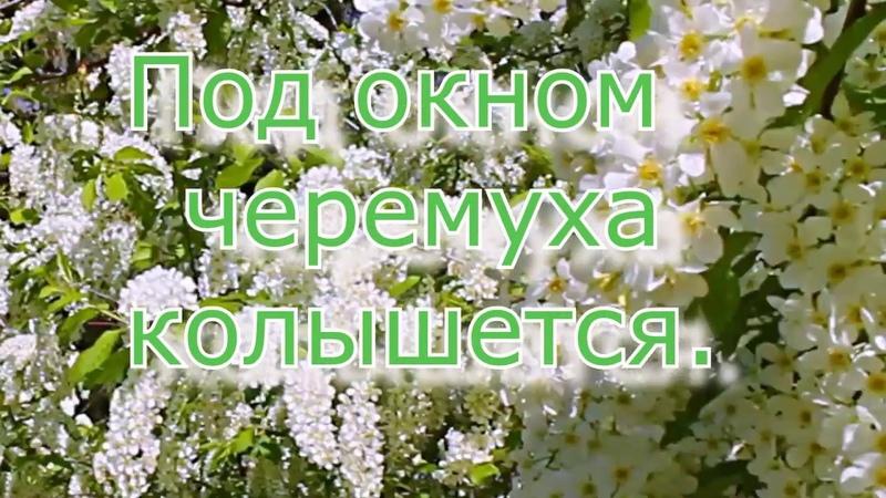 Валерий Шелестов Под окном черемуха колышетсяYamaxa psr-970