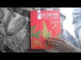 Растения России Красная книга Росмэн