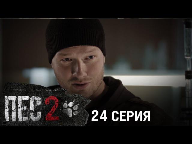 Сериал Пес - 2 сезон - 24 серия - ПРЕМЬЕРА