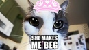 ♫ She Makes Me Beg ♫ Music Video