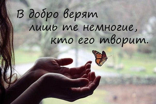 http://cs406123.vk.me/v406123969/674f/qOZy7Hju2dk.jpg