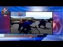 Diputados califican de irrespetuosos Haitianos patearon bandera Dominican