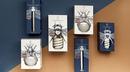 Дизайн лампочек для компании CS-Electrics от Ангелины Писчиковой из Беларуси.