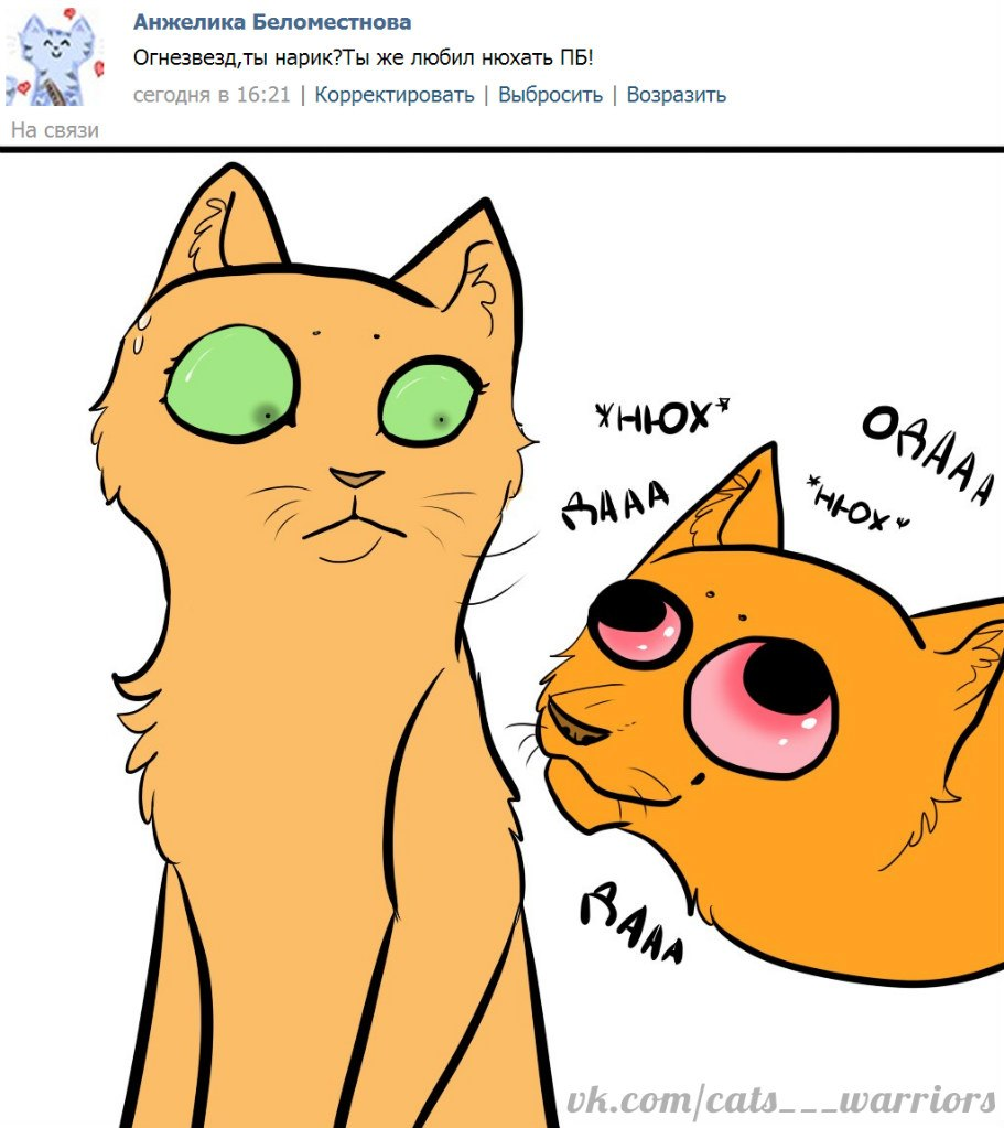 Викторина по котам воителям