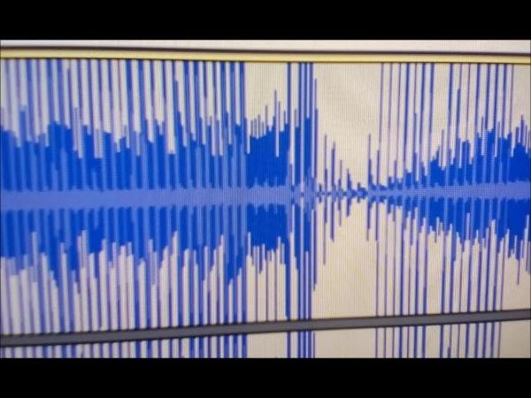 Голоса привидений / Ghost voices. 17-09-2018 9.30(Л/L) /031
