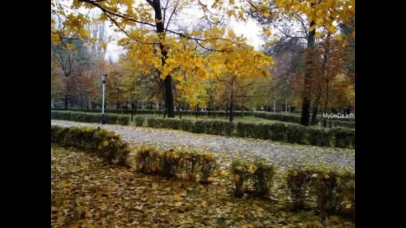 Шалунья-осень