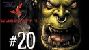Warcraft III: Reign of Chaos - ГЛАВА ОРДЫ! ДОЛГИЙ ПОХОД! 20