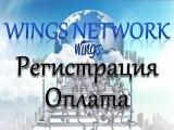 Wings Network Регистрация и оплата в компании Вингс Нетворк по шагам