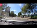 Собачка перебегает дорогу через наземный переход в Одинцово