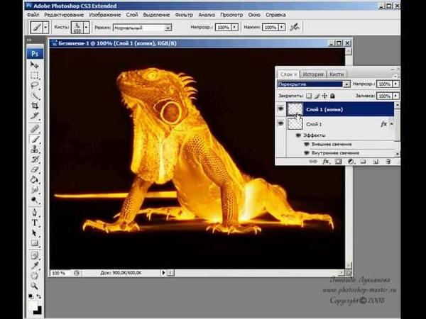 Огненная игуана.