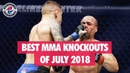 Best MMA Knockouts of July 2018 UFC, DWTNCS, PFL