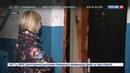 Новости на Россия 24 • Багдасарян так и не увидели на исправительных работах