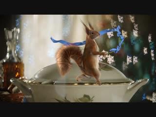 Новый год близко. Белки атакуют Первый канал. «Супница»