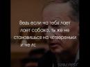 Михаил Задорнов о невежестве и низком интеллекте у людей