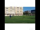 Freestyle training