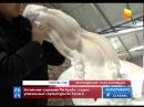 """""""Живые"""" скульптуры китайского дизайнера покоряют мир"""
