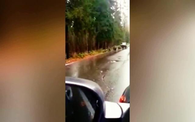 Нива летит на собачьей упряжке - a car on a dog sled - like a boss