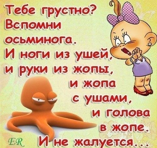 http://cs14111.vk.me/c540100/v540100291/196b8/SmgQS-IhntU.jpg