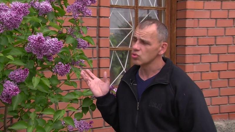 Редкие растения - экзоты в садах Урала .г.Челябинск