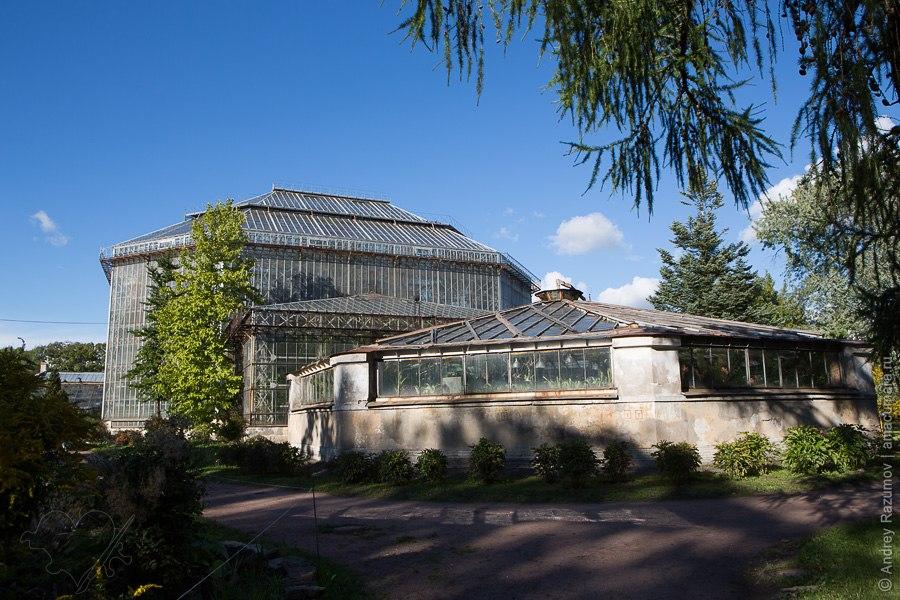 Ботанический сад в Санкт-Петербурге осень листья деревья