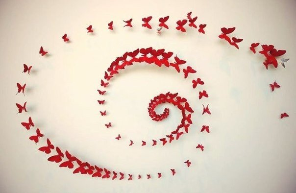 Красивые идеи для оформления стен бабочками из бумаги