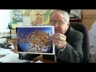 Золото древних предков ( Эфир  24.05.2013) 83 серия цикла передач