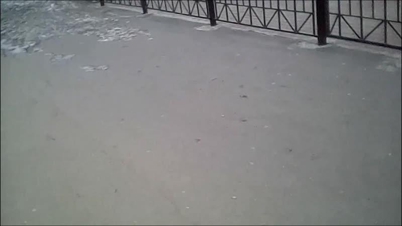 Нёрф Битва на Русском Кампания Биробиджан 1.0 Самбери Часть 5 из 5