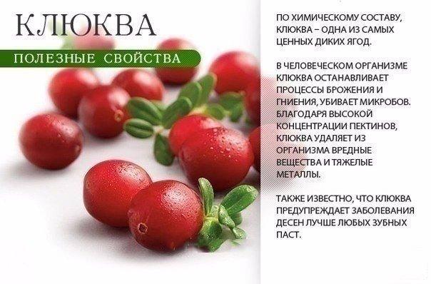 Польза красных продуктов (9 фото) - картинка