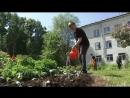Популярность программ и акций Союза садоводов России растет с каждым днём