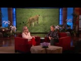 Exclusive! Meryl Streep Discusses Her Trip to Africa on Ellen