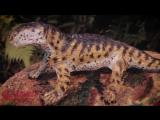 В Ботаническом саду ПГНИУ поселились 12 доисторических ящеров