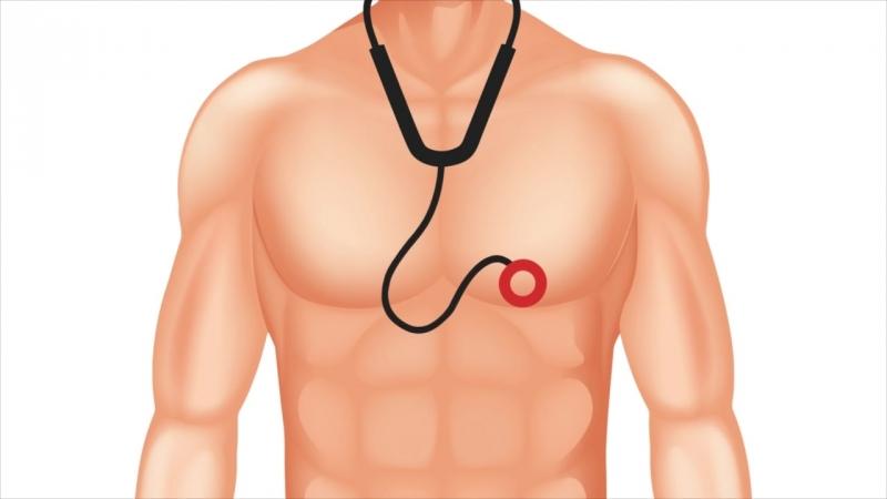 4. Аускультация сердца, основные тоны