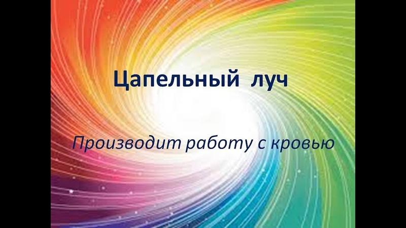 Учение А.Н. Петрова Древо Жизни Цапельный луч