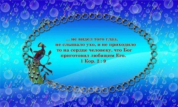Москва призывает Вашингтон скорректировать политику по Украине, - МИД РФ - Цензор.НЕТ 3618