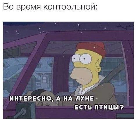 Фото №456242924 со страницы Сони Зборовской